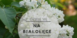 darmowe wydarzenia na Białołęce