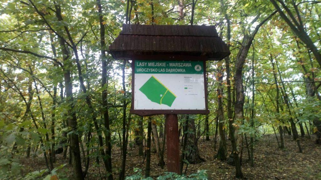 zielona mapa warszawy