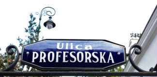ulica profesorska
