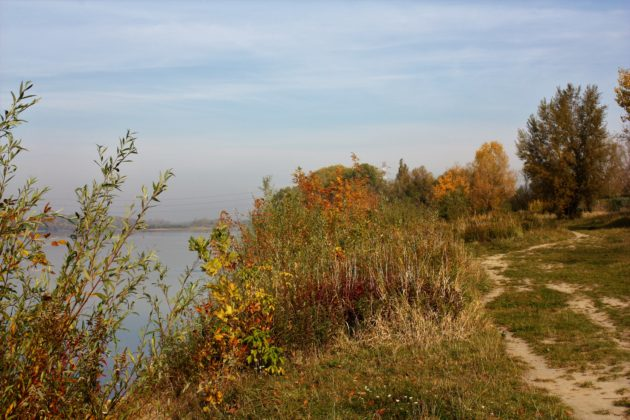 rezerwaty przyrody na Białołęce