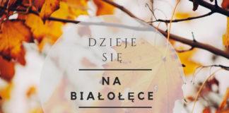 wydarzenia Białołęka 24-30 listopada