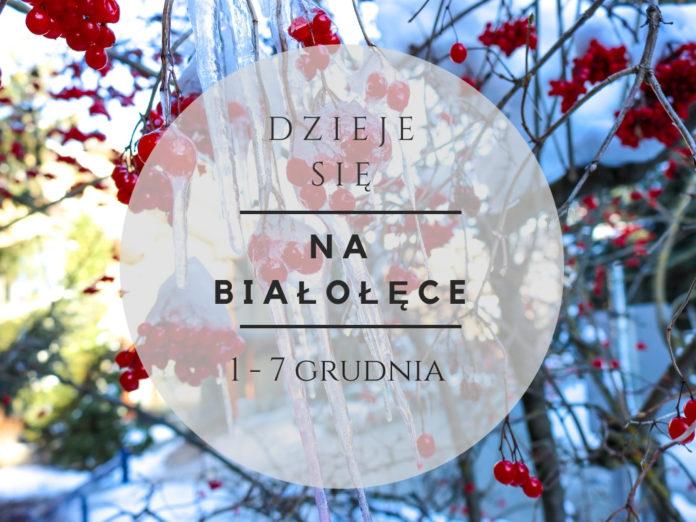 wydarzenia na Białołęce 1-7 grudnia