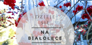 wydarzenia na Białołęce 15-21 grudnia