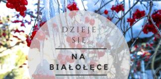 wydarzenia na Białołęce 8-14 grudnia